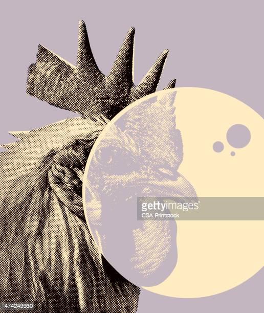 ilustrações, clipart, desenhos animados e ícones de galo - cockerel