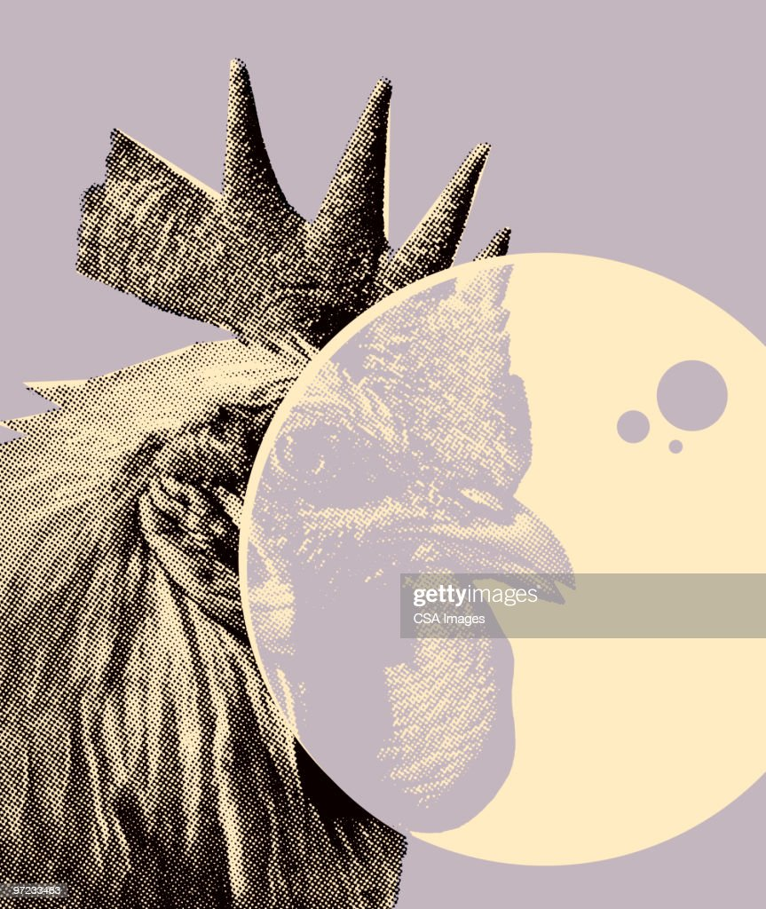 Rooster : stock illustration