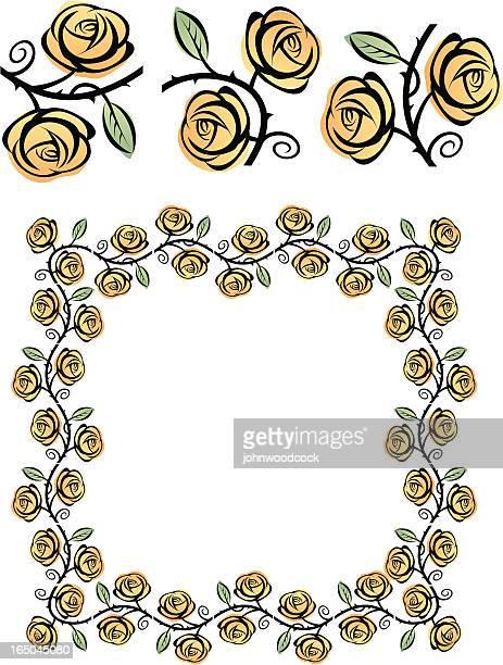 Illustrations et dessins anim s de rosier grimpant getty images - Dessin de rosier ...