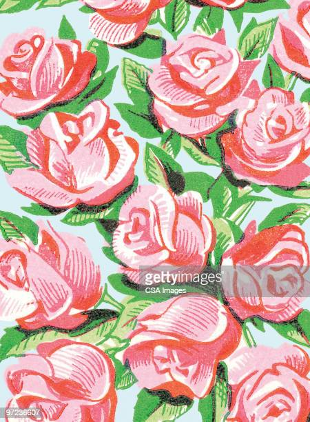 roses - image stock illustrations