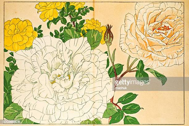 roses japanese woodblock print - japanese art stock illustrations