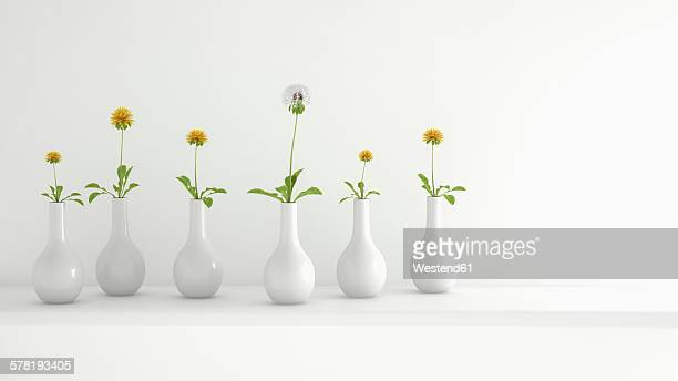Row of white flower vases with a blowball and dandelions, 3D Rendering