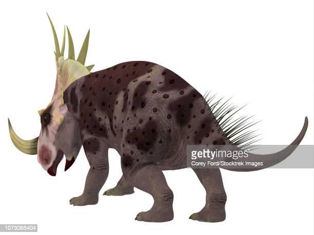 ilustraciones, imágenes clip art, dibujos animados e iconos de stock de rubeosaurus dinosaur, rear view. - plesiosaurio