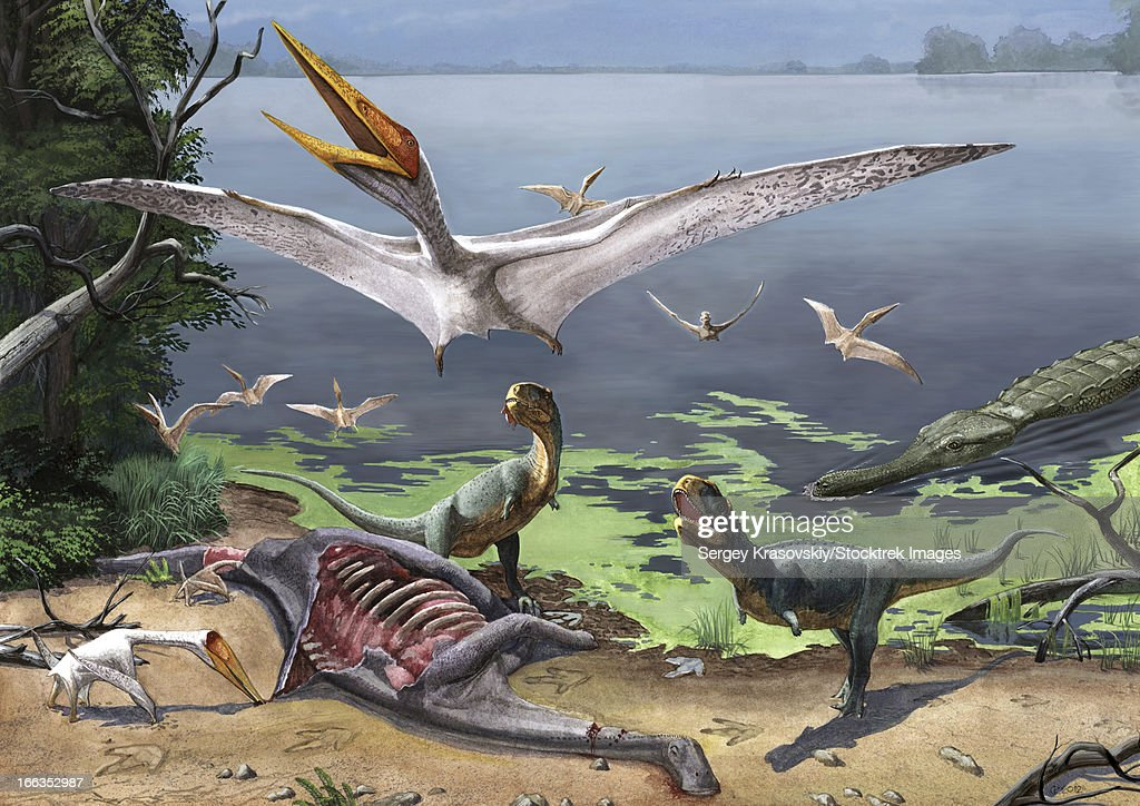 Rugops primus dinosaurs and Alanqa pterosaurs mortify a dead carcass. : stock illustration