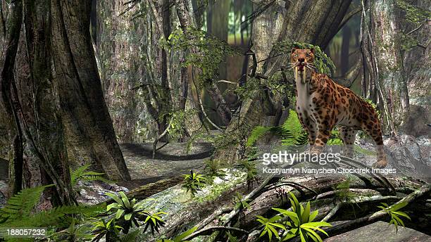 Saber-Toothed Tiger in a prehistoric forest.