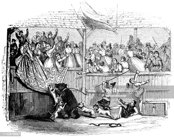 sackerson the bear at a bear-baiting match in a beargarden in england - 17th century - animal welfare stock illustrations