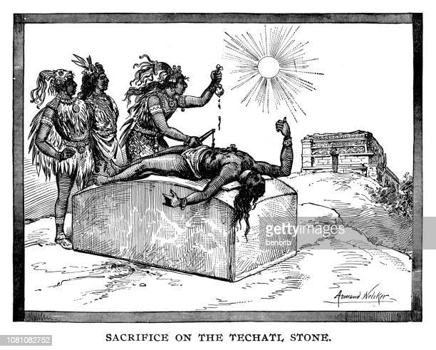 sacrifice on the techatl stone - ceremony stock illustrations