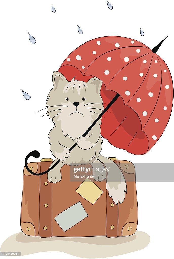 Sad cat with an umbrella
