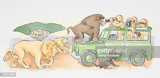 ilustraciones, imágenes clip art, dibujos animados e iconos de stock de a safari jeep with monkeys climbing on it, lions following close behind. - ataque animal