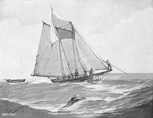 Sailing In Rough Seas