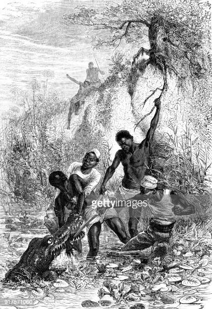 sailors fight with a crocodile - 1877 stock illustrations, clip art, cartoons, & icons