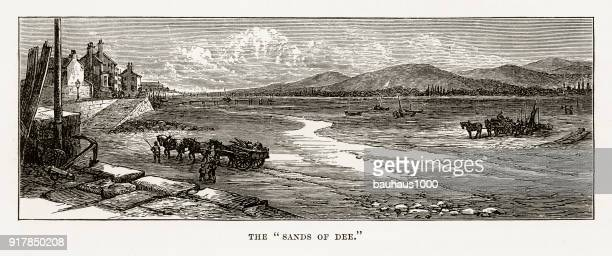 Sands of River Dee in Chester, Wales Victorian Engraving, 1840