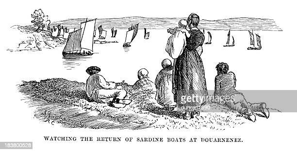 sardine boats at douarnenez - brittany france stock illustrations, clip art, cartoons, & icons