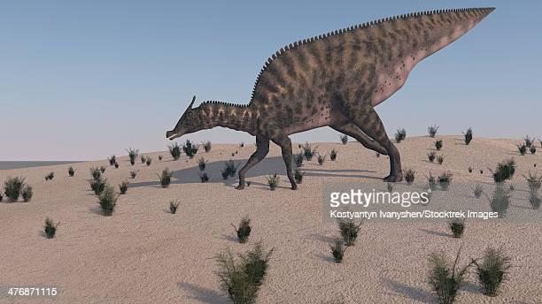 saurolophus walking across a barren landscape. - animal body stock illustrations, clip art, cartoons, & icons