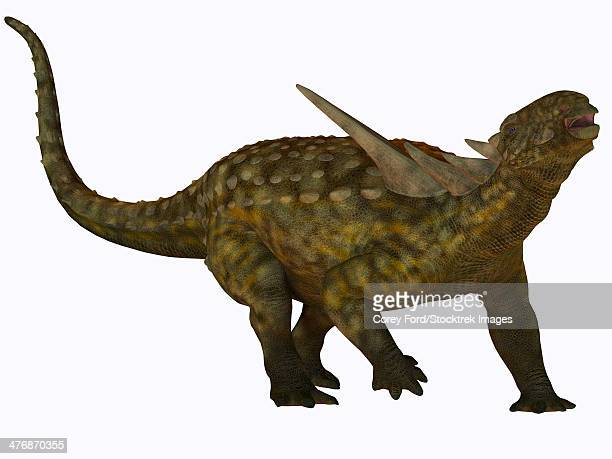 sauropelta, a herbivorous dinosaur that lived in river floodplains of north america during the cretaceous period. - thyreophora stock illustrations, clip art, cartoons, & icons