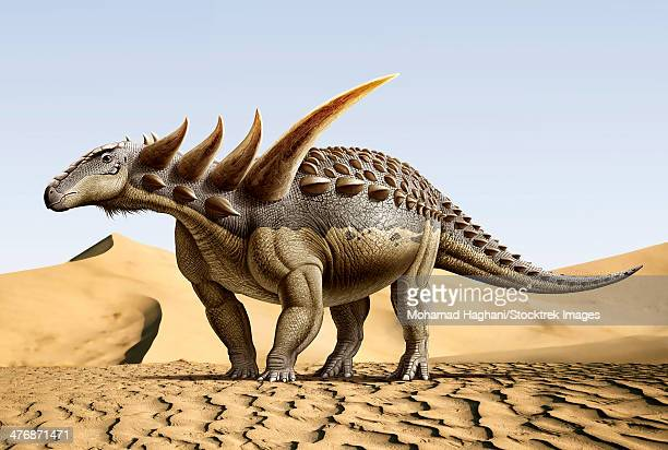 sauropelta, a nodosaurid dinosaur that existed in the early cretaceous period. - thyreophora stock illustrations, clip art, cartoons, & icons
