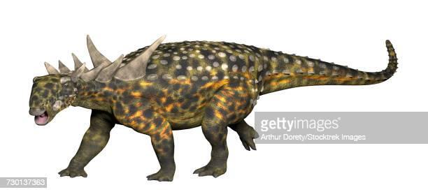 sauropelta, an early nodosaurid ankylosaur. - scute stock illustrations, clip art, cartoons, & icons