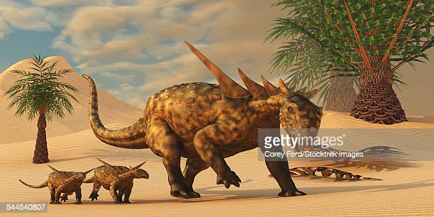 a sauropelta mother leads her offspring in a desert area of north america. - scute stock illustrations, clip art, cartoons, & icons