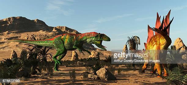 saurophaganax, a huge allosaurus like dinosaur, attacks a stegosaurus. - thyreophora stock illustrations, clip art, cartoons, & icons