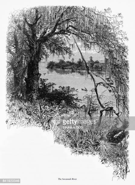 ilustrações, clipart, desenhos animados e ícones de rio savannah, savannah, georgia, estados unidos, gravura de victorian americana, 1872 - geórgia sul dos estados unidos