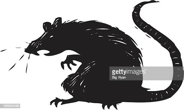 scary rat - rat stock illustrations, clip art, cartoons, & icons