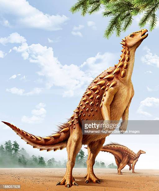 a scelidosaurus standing on its hind legs eating conifer leaves. - scute stock illustrations, clip art, cartoons, & icons