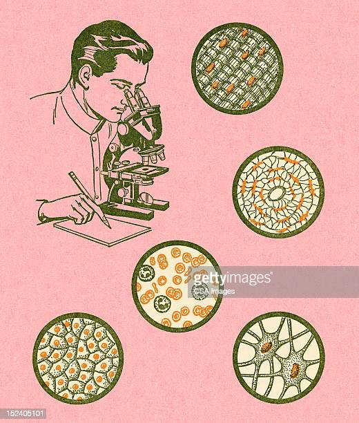 Scientist Looking at Cells Under Mircoscope