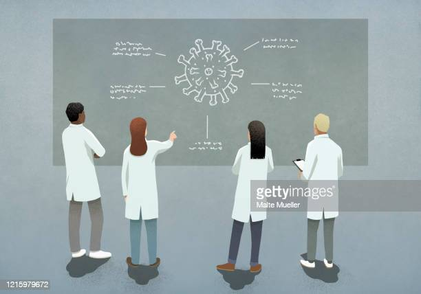 scientists discussing covid-19 coronavirus diagram - forschung stock-grafiken, -clipart, -cartoons und -symbole