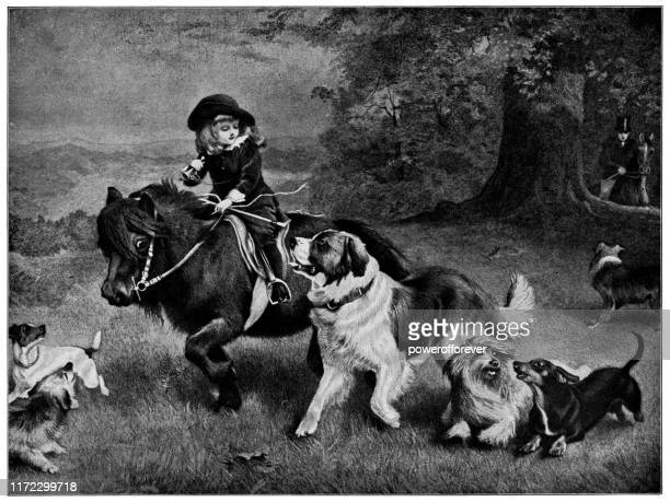 a scratch pack by charles burton barber - 19th century - pack of dogs stock illustrations