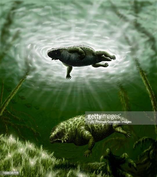 scutosaurus karpinskii in prehistoric waters. - scute stock illustrations, clip art, cartoons, & icons