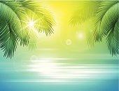 Sea and palm landscape