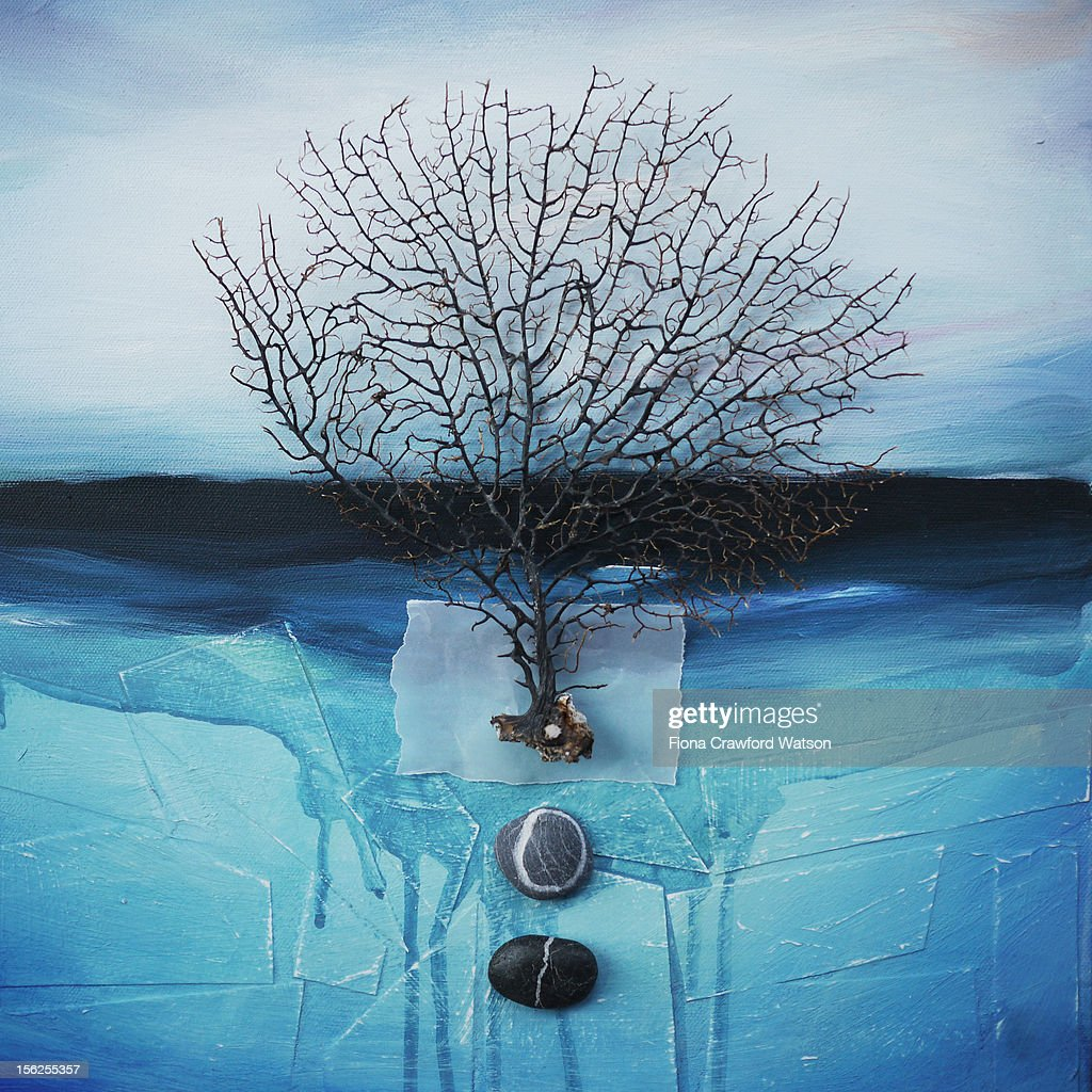 Sea fan and pebbles on a blue sea background : Stock Illustration
