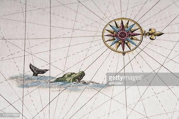 ilustrações de stock, clip art, desenhos animados e ícones de monstro marinho - arcaico