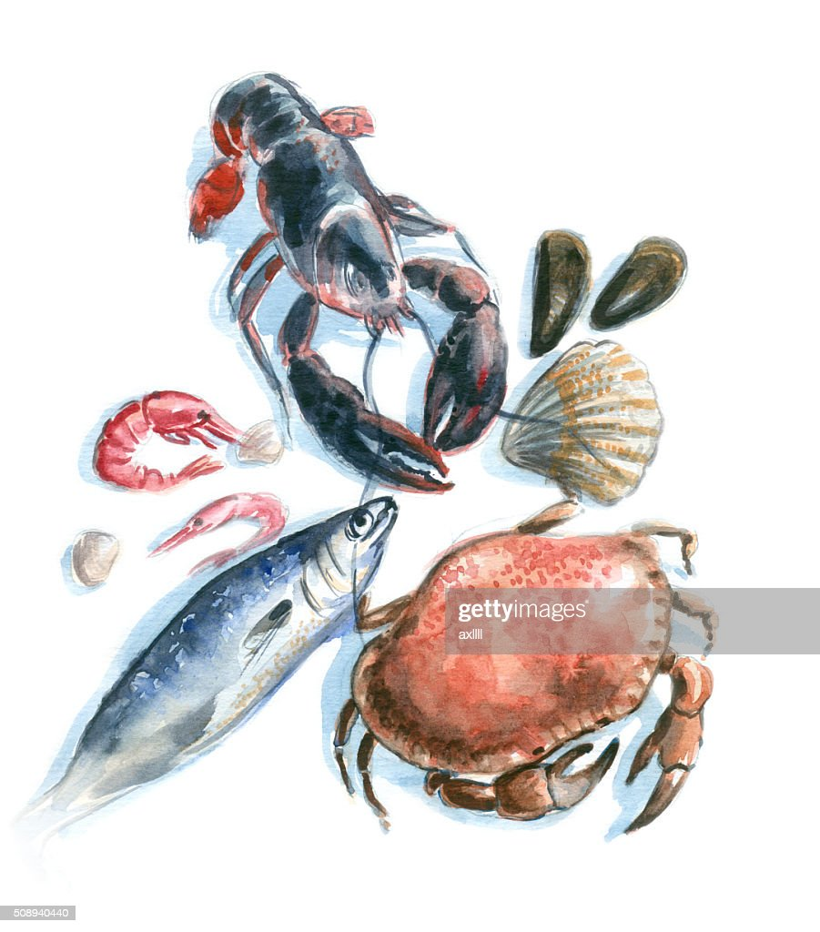 seafood watercolor : stock illustration