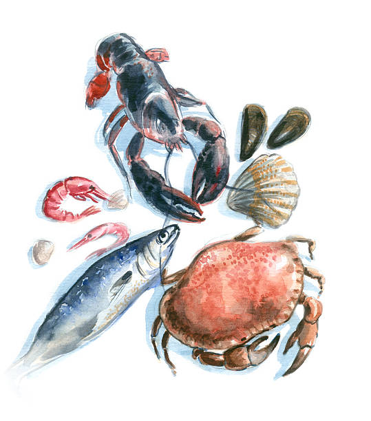 seafood watercolor