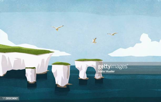 seagulls flying over ocean rock formations - sea stock illustrations