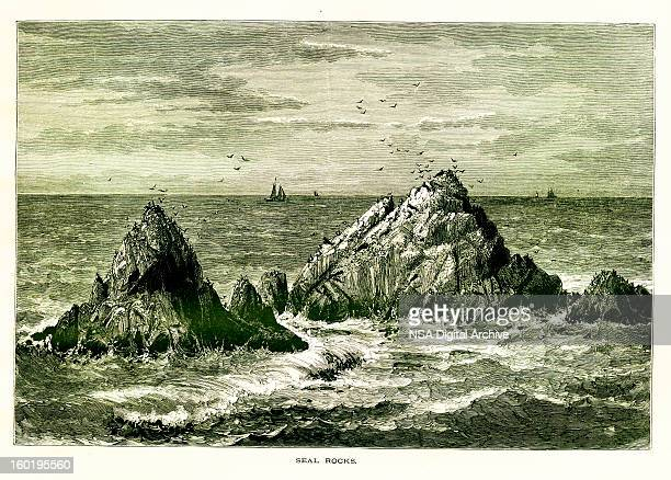 Seal Rocks, San Francisco