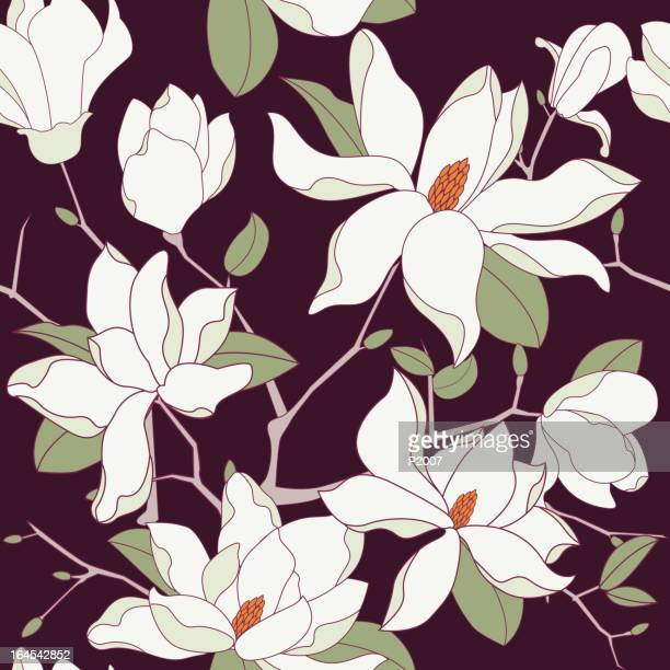seamless magnolia background - flowering trees stock illustrations, clip art, cartoons, & icons