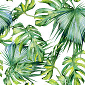 http://www.istockphoto.com/vector/seamless-watercolor-illustration-of-tropical-leaves-dense-jungle-gm544590176-97913963
