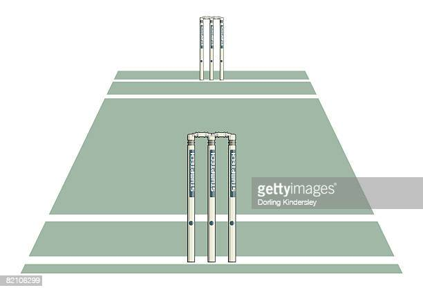 stockillustraties, clipart, cartoons en iconen met section of cricket field, wickets at either end - cricketveld