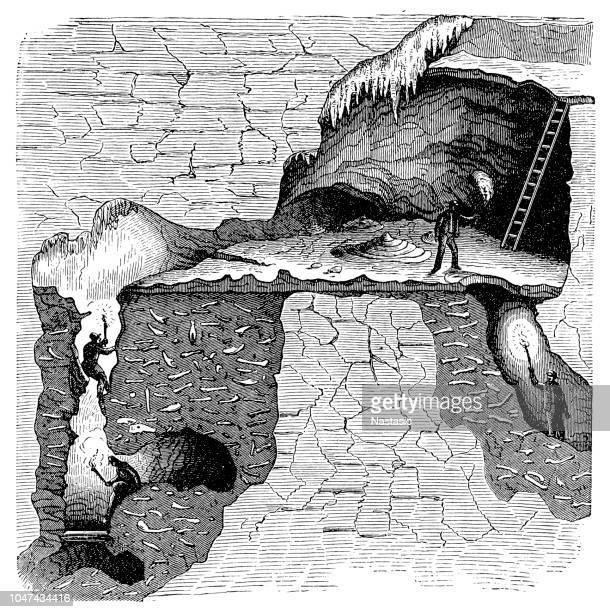 sectional view of a bone cavern showing debris of animal bones. william buckland (1784-1856) english geologist and clergyman, considered the remains to be evidence of the biblical flood - archaeology stock illustrations
