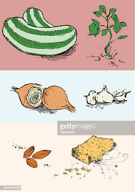 selection of illustrated vegetables/ingredients - marrom stock illustrations
