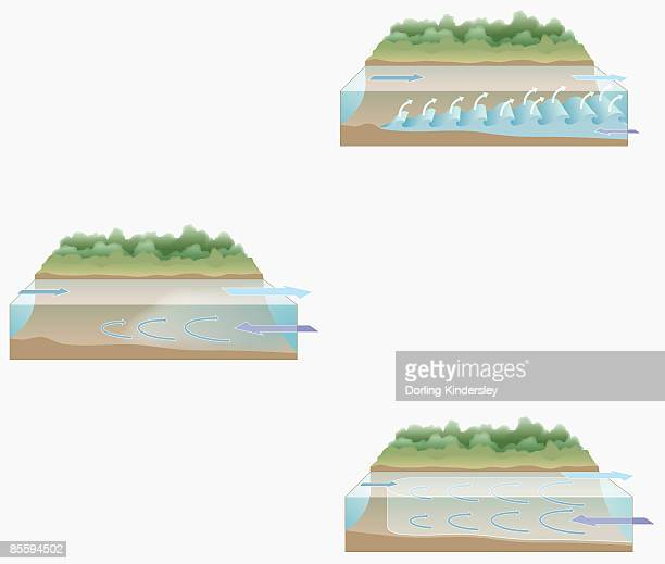 Sequence of illustrations showing partially mixed estuary, salt wedge estuary, and fully mixed estuary