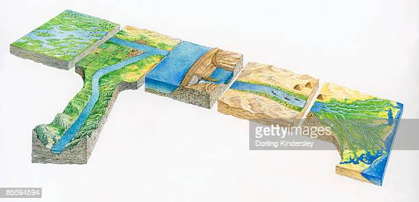 sequence of illustrations showing white nile and blue nile converging at khartoum to form the river nile, reaching border of sudan and egypt, flowing into lake nasser created by aswan dam.  - nile river stock illustrations, clip art, cartoons, & icons