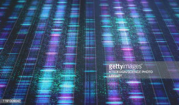 dna sequencing, illustration - healthcare and medicine stock illustrations