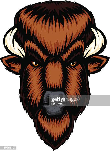 serious buffalo - african buffalo stock illustrations, clip art, cartoons, & icons