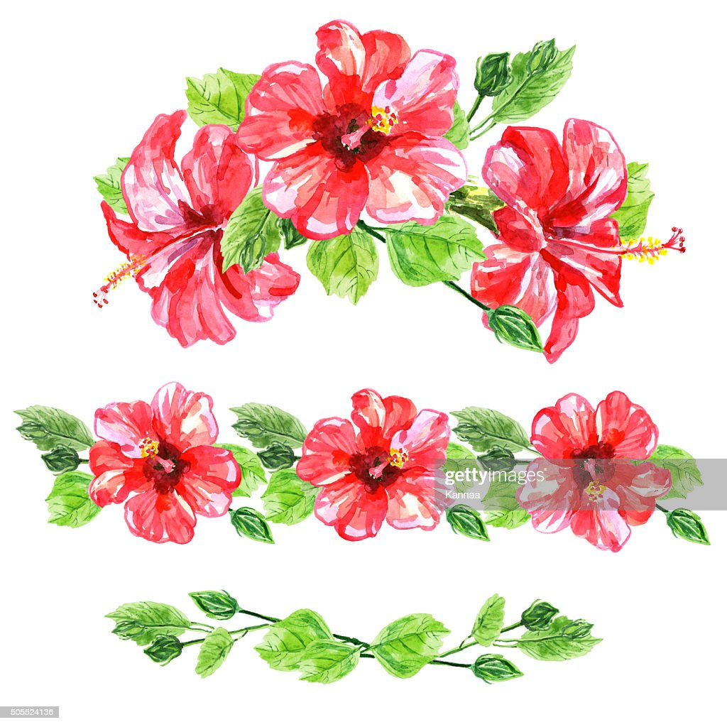 Set of red watercolor hibiscus flower stock illustration getty images set of red watercolor hibiscus flower stock illustration izmirmasajfo