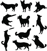 Set of ten black silhouetted dogs