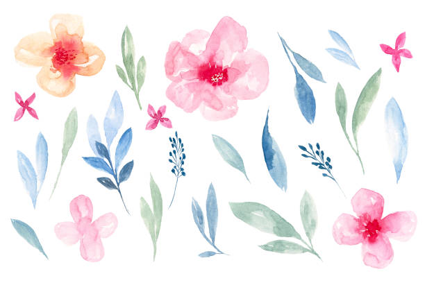 set of watercolor flower and green leaves - pastel stock illustrations