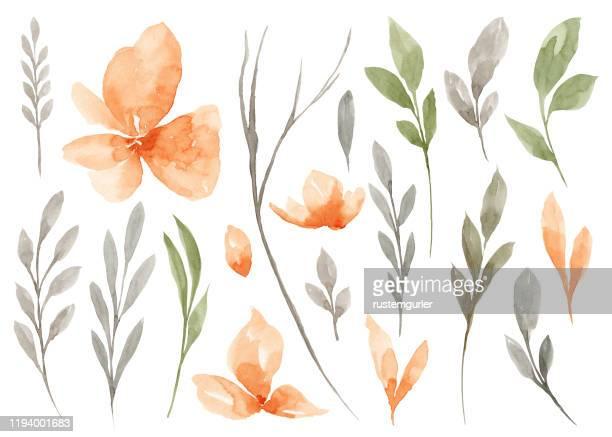illustrations, cliparts, dessins animés et icônes de ensemble de fleur d'aquarelle et de feuilles vertes - ton pastel